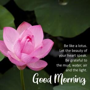 good-morning-wish-with-lotus-flower