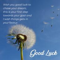 good-luck-wish-message