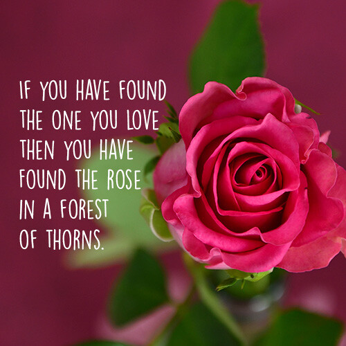 found-the-one-you-love