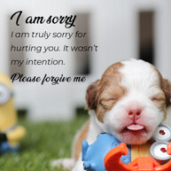 please-forgive-message-with-cute-puppy