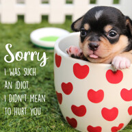 sorry-with-cute-black-brown-puppy-inside-the-heart-printed-mug