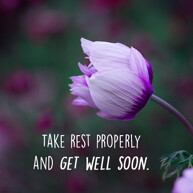 take rest message with purple flower image