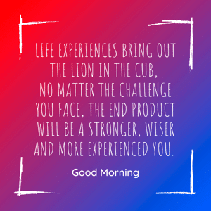 life-experience-motivation-quote